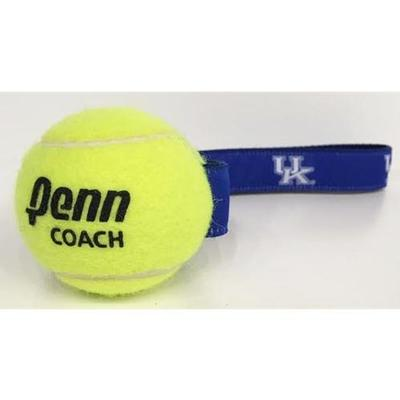 Kentucky Tennis Ball Pet Toy