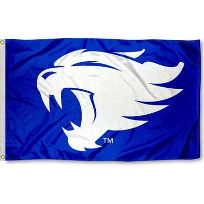 Kentucky New Wildcat Logo Flag