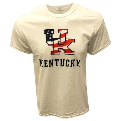 Kentucky American Flag Fill T-shirt