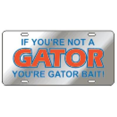 Florida License Plate Acrylic Gator Bait