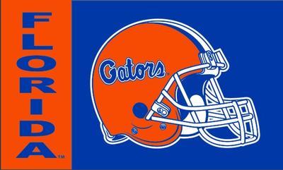 Florida 3' x 5' Helmet House Flag