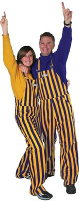 Purple and Gold Adult Game Bibs Striped Overalls