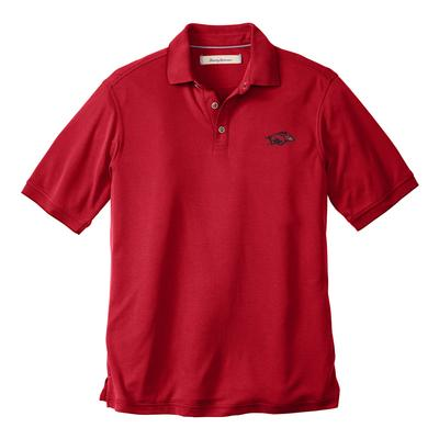 Arkansas Tommy Bahama All Square Core Polo