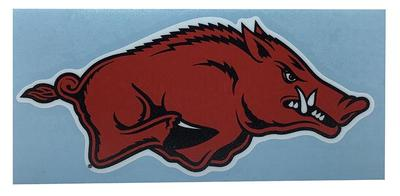 Arkansas Razorback 6