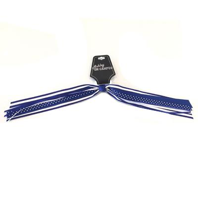 Blue and White Ponytail Ribbon Streamer