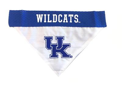 Kentucky Wildcats Pet Collar Bandana