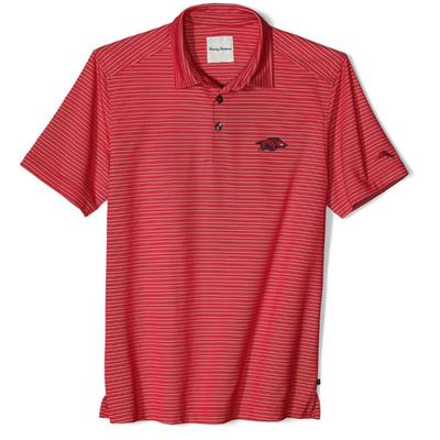 Arkansas Tommy Bahama Polo Rico