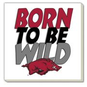 Arkansas Born To Be Wild Coaster (4 Pack)