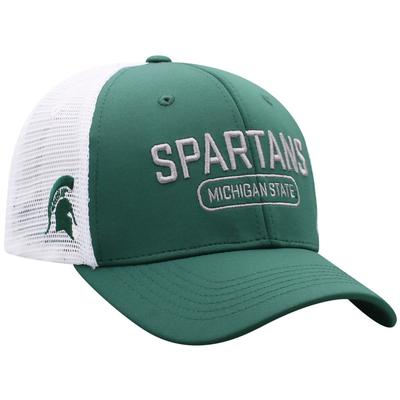 Michigan State Notch 3D Logo Mesh Back Hat