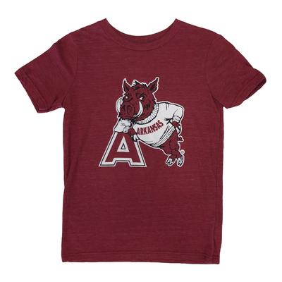 Arkansas Boys Vault Logo Triblend Tee