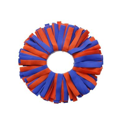 Orange and Blue Classic Pomchie