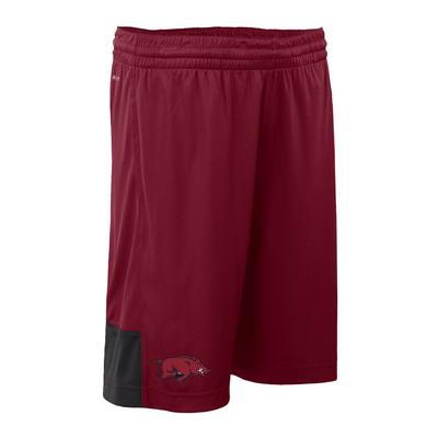 Arkansas Nike Youth DriFit Shorts