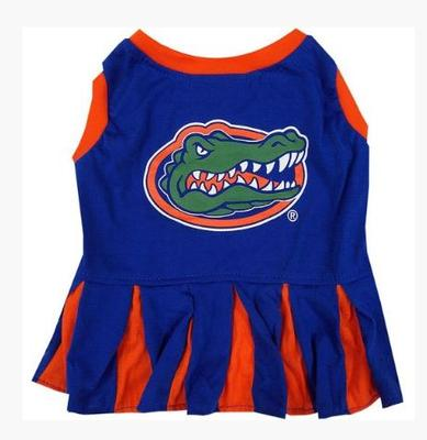 Florida Pet Cheerleader Outfit
