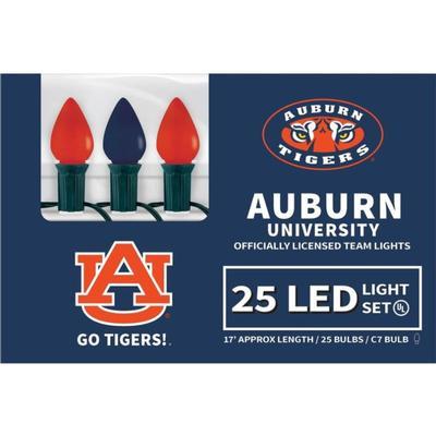 Auburn Led Light Strand