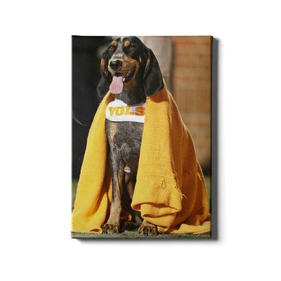 Tennessee 16x24 Smokey's Blanket Canvas