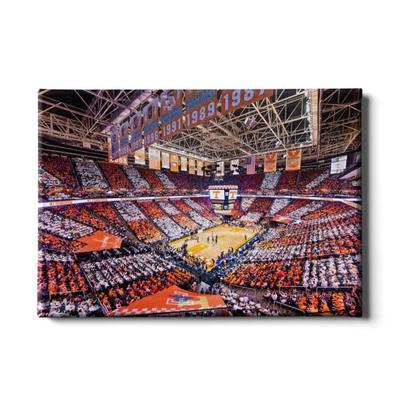 Tennessee 24x16 Checkerboard Thompson-Boling Canvas