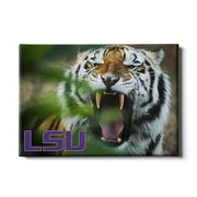 Lsu 24x16 Mike The Tiger Canvas
