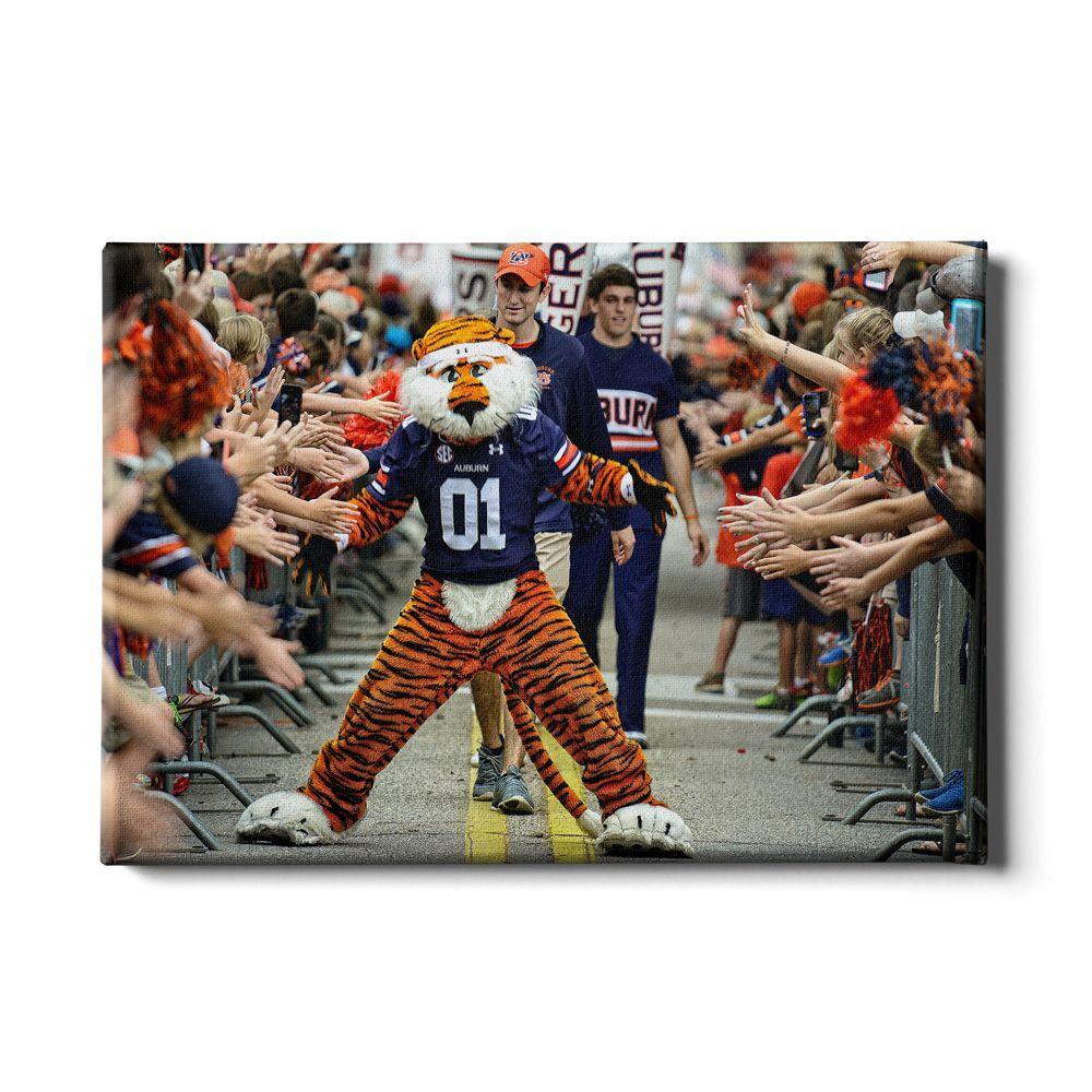 Auburn 24x16 Aubie At The Tiger Walk Canvas