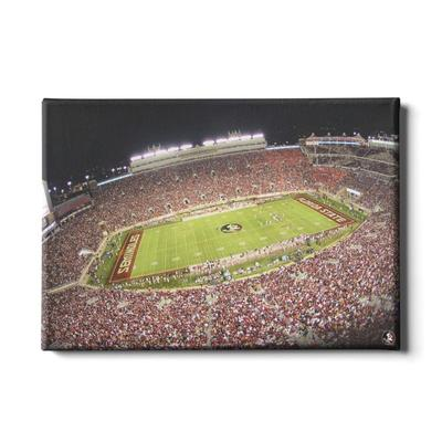 FSU 24x16 DOAK Canvas