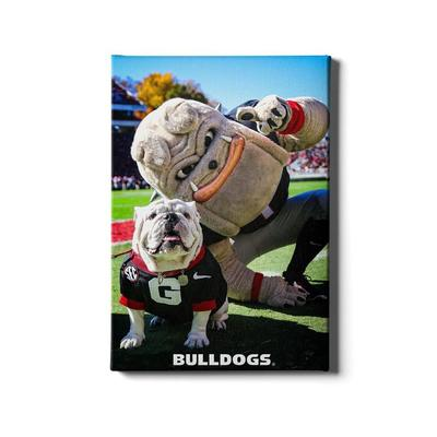 Georgia 24x16 Uga and Hairy the Dawg Canvas