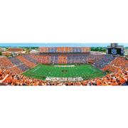 Auburn Stadium Panoramic Puzzle