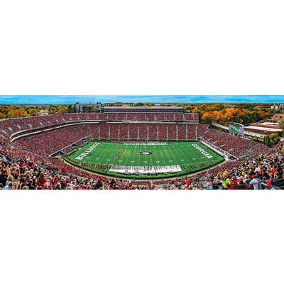 Georgia Stadium Panoramic Puzzle