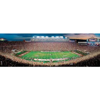 FSU Stadium Panoramic Puzzle