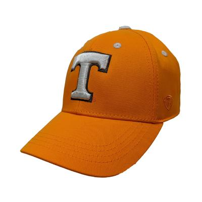 Tennessee Top of the World Youth Rookie Logo Flex Hat