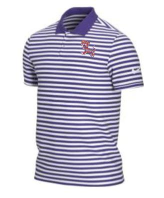 Clemson Nike Golf Vintage Tiger Dry Victory Stripe Polo PURPLE