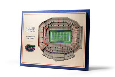 Florida 5 Layer Stadium View 3D Wall Art