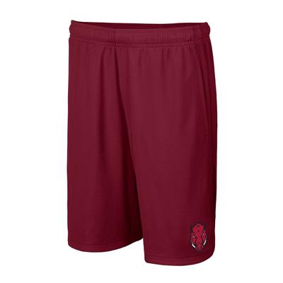 Arkansas Nike Youth Hype Shorts