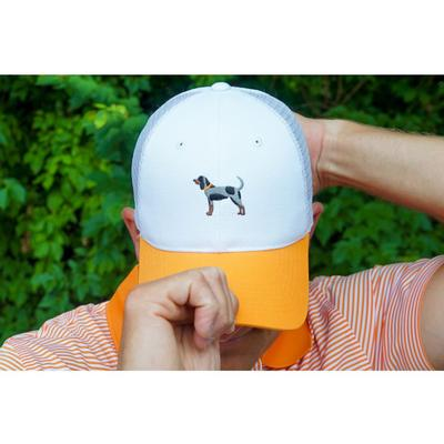 Tennessee Volunteer Traditions Bluetick Hound Two Tone Promesh Hat