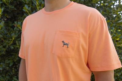 Tennessee Volunteer Traditions Bluetick Orange Pocket Tee