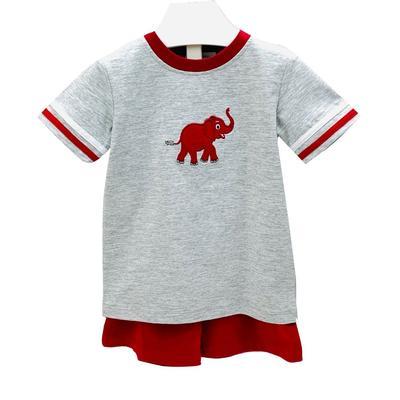 Ishtex Toddler Grey and Crimson Tee and Shorts Set