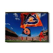 Auburn 24in X 16in Au Flags Canvas