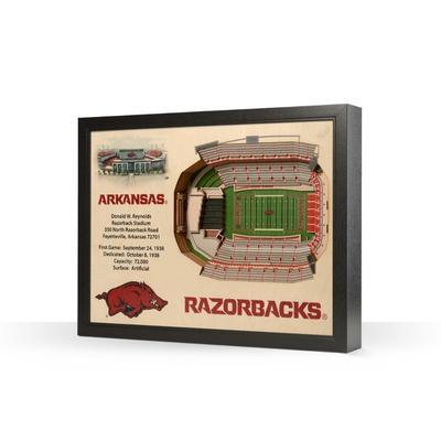 Arkansas Donald W Reynolds Razorback Stadium Wall Art