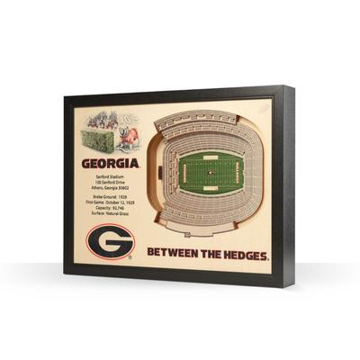 Georgia Sanford Stadium Wall Art