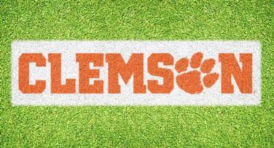 Clemson Wordmark Lawn Stencil Kit