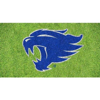 Kentucky Wildcat Logo Lawn Stencil Kit