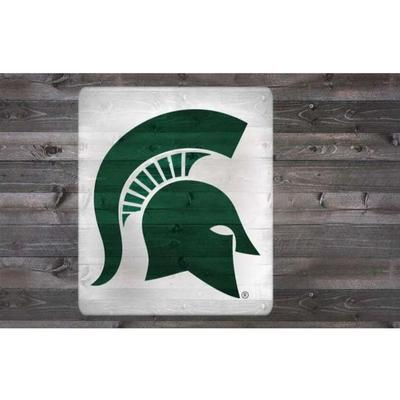 Michigan State Stencil Kit