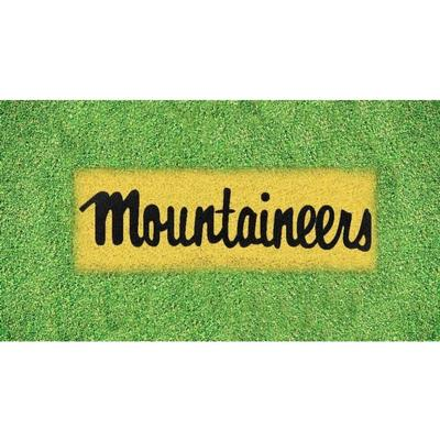 Appalachian State Mountaineers Lawn Stencil Kit