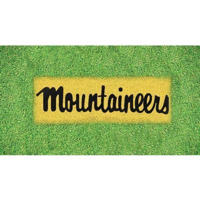 Appalachian State Mountaineers Lawn Stencil Kit