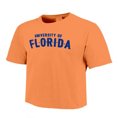 Florida Image One School Stars Comfort Colors Cropped Tee