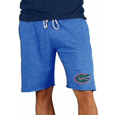 Florida Concept Sports Mainstream Terry Shorts