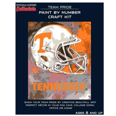 Tennessee Paint by the Numbers Kit