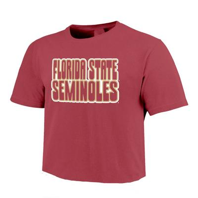 Florida State Comfort Colors Women's Retro Outline Cropped Tee
