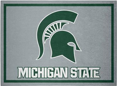 Michigan State Team Rug (20in x 30in)