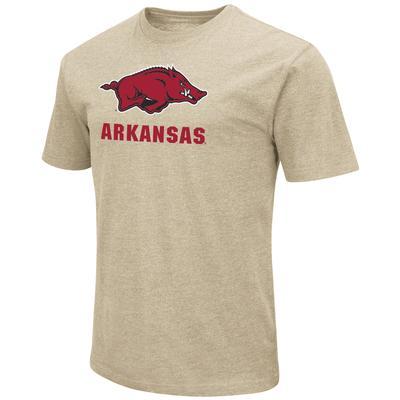 Arkansas Colosseum Big Logo Over School Short Sleeve Tee
